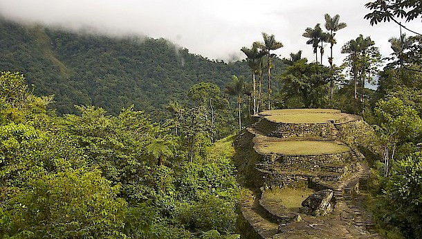 View from the top terrace at Ciudad Perdida, the lost city in Colombia. Photo: Jenny Leonard | shutterstock.com