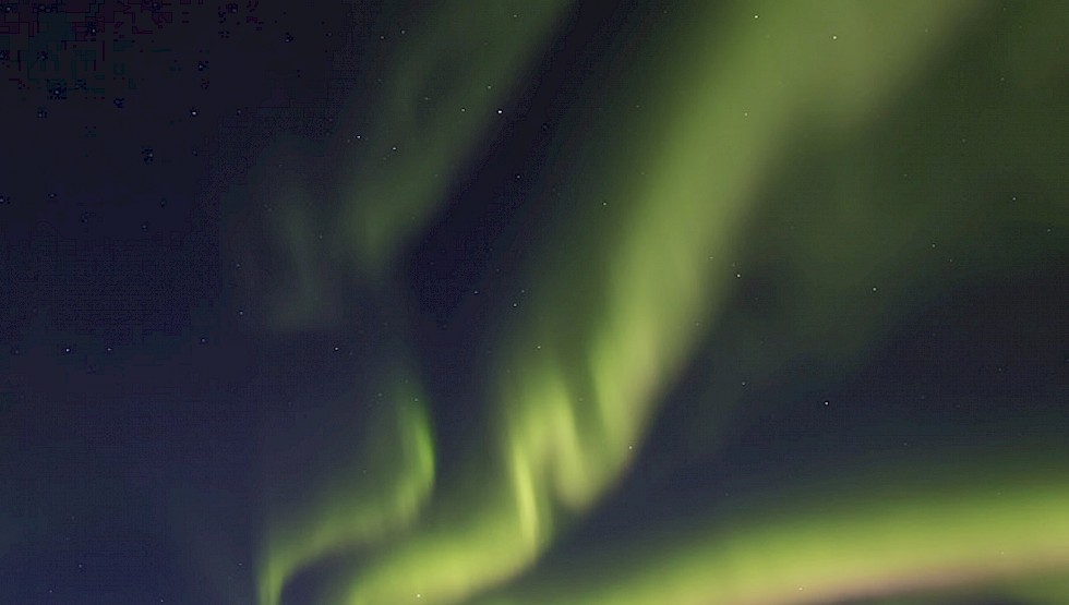 The Northern Lights above Hotel Rangá. Photo: Hotel Rangá