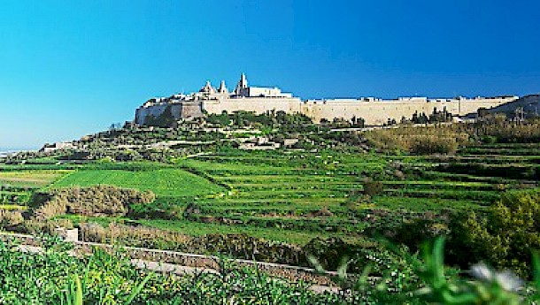 A panoramic view of Mdina